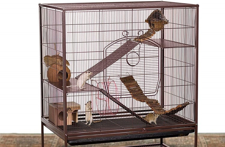 cage with chinchillas in it