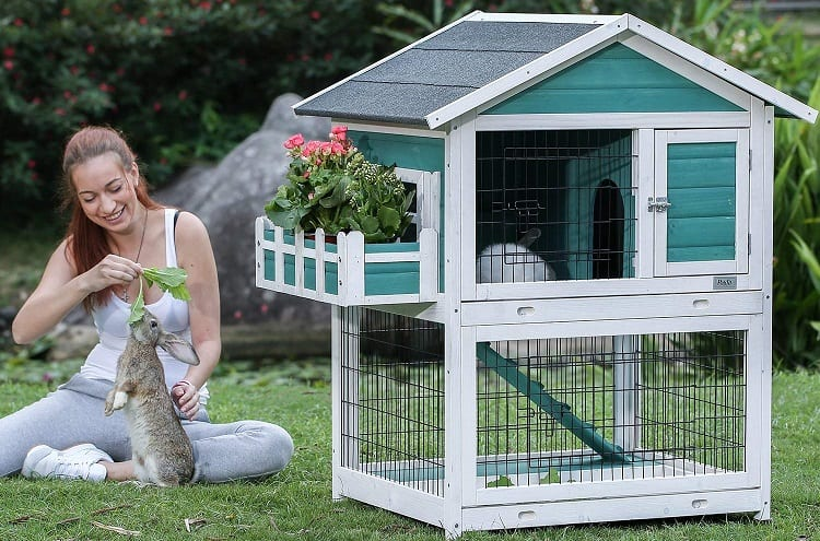 girl with rabbit pet