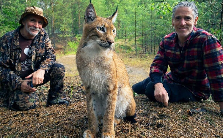 man with lynx in nature