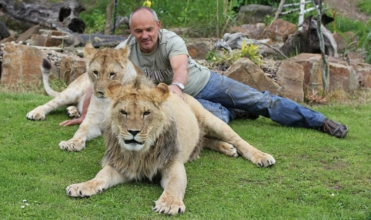 Man With Lions