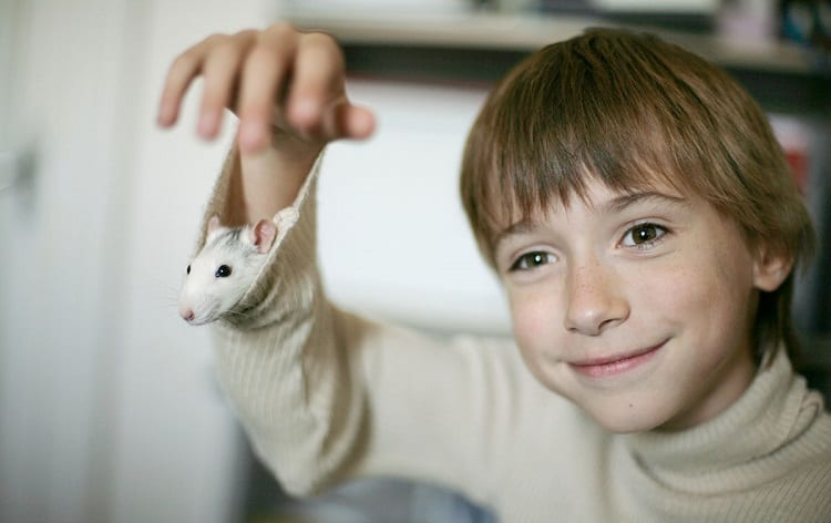 Kid Holding Rat