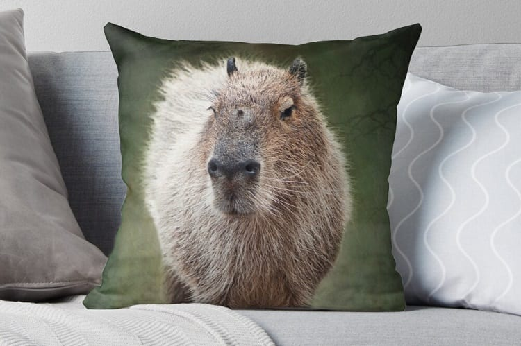 Capybara Pillow