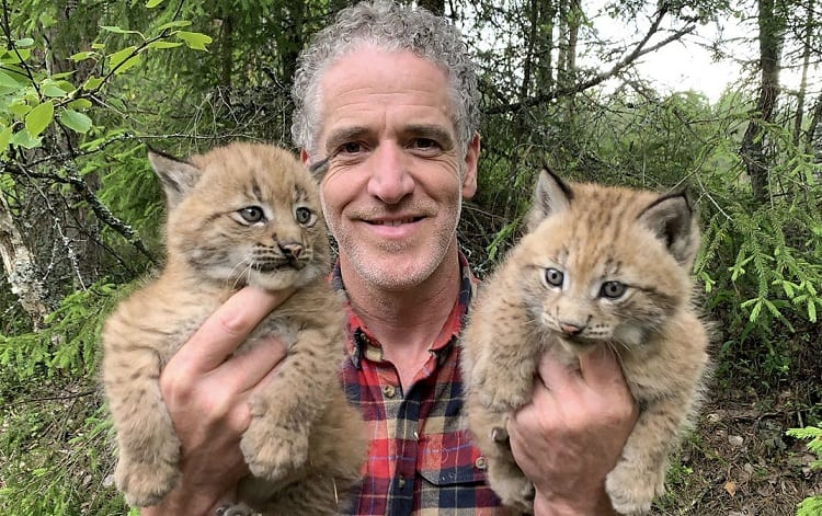Man Holding Two Small Lynx